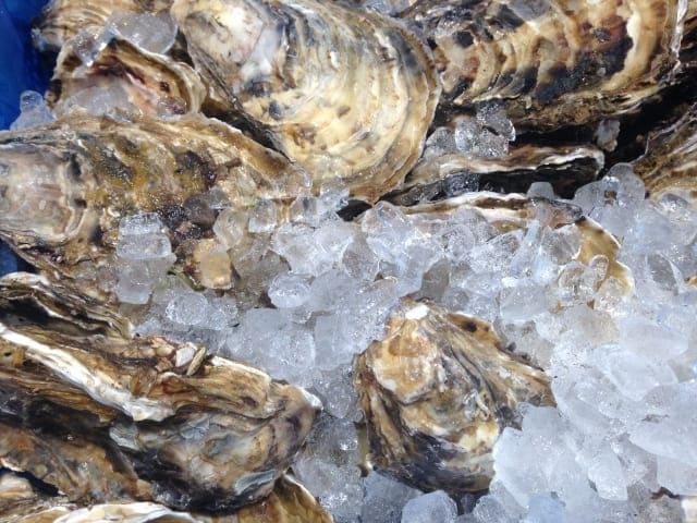 氷と生牡蠣