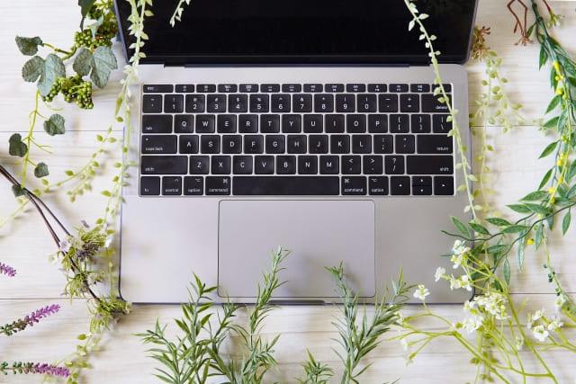 植物とノートパソコン