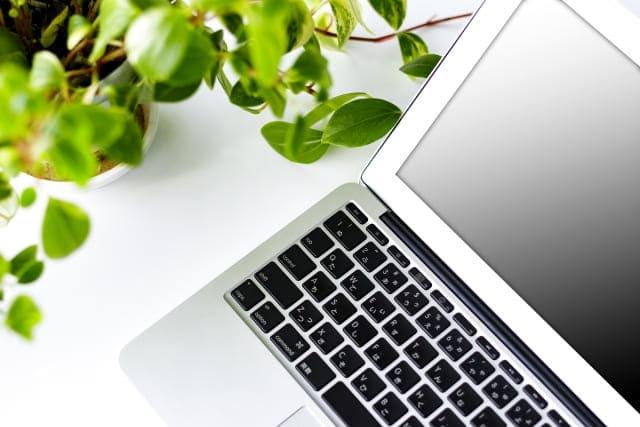 観葉植物とノートパソコン